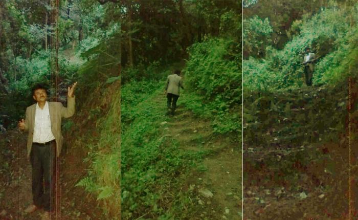 किपूया २ वडा माःक्वाःचा जंगलय् हाइकिंग मार्ग निर्माण