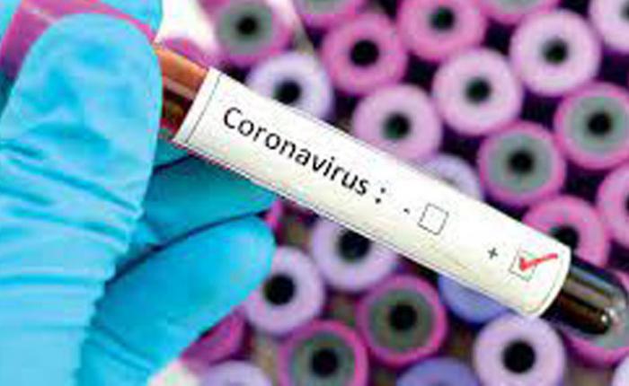 संक्रमितया ल्याः छुं भचा  म्हो जुल , थप ७३६८ म्ह संक्रमण पुष्टि